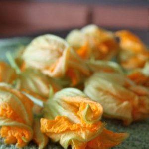 Cheese Stuffed Zucchini Flowers