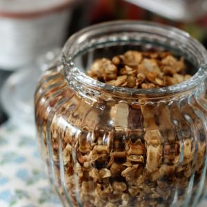 Honey Nut Cocoa Crunch Granola | AggiesKitchen.com