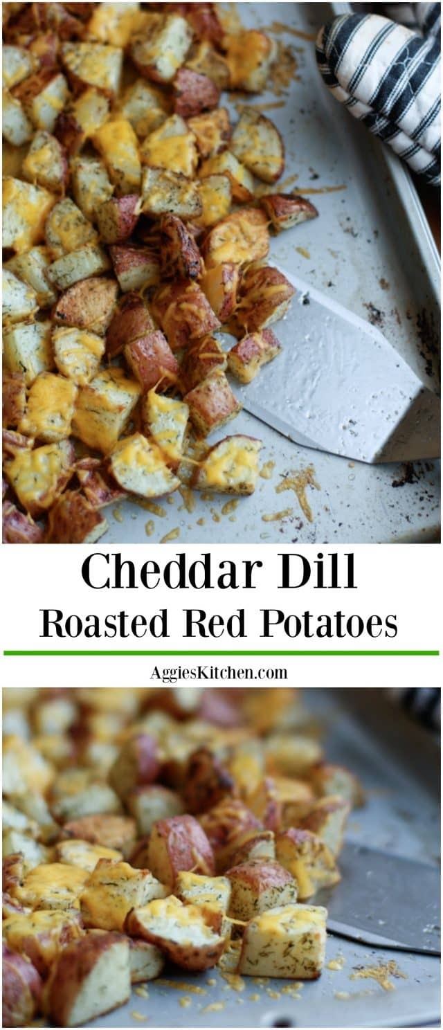 Roasted Red Potatoes with Dill and Cheddar Cheese are a dish that comes together quickly and is loved by my family. You need this red potato recipe in your life!