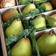 Harry and David Royal Riviera Pears