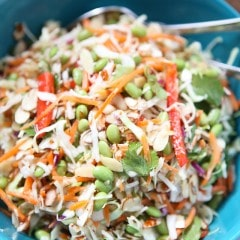 So light an fresh! This Asian Almond Slaw Salad is healthy and filled with crunch. Serve it at a barbecue or gathering for a crowd pleasing side dish! #FisherUnshelled