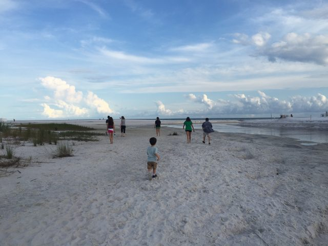 We enjoyed our Family Beach Vacation to 30A Seaside area so much that we are doing it again this summer! Shopping, restaurants and things to do.